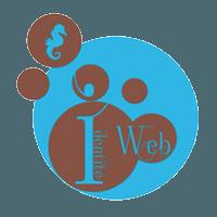 agence web vosges
